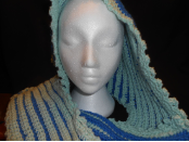Reversable Hooded Scarf