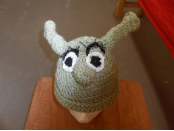 Shrek Hat